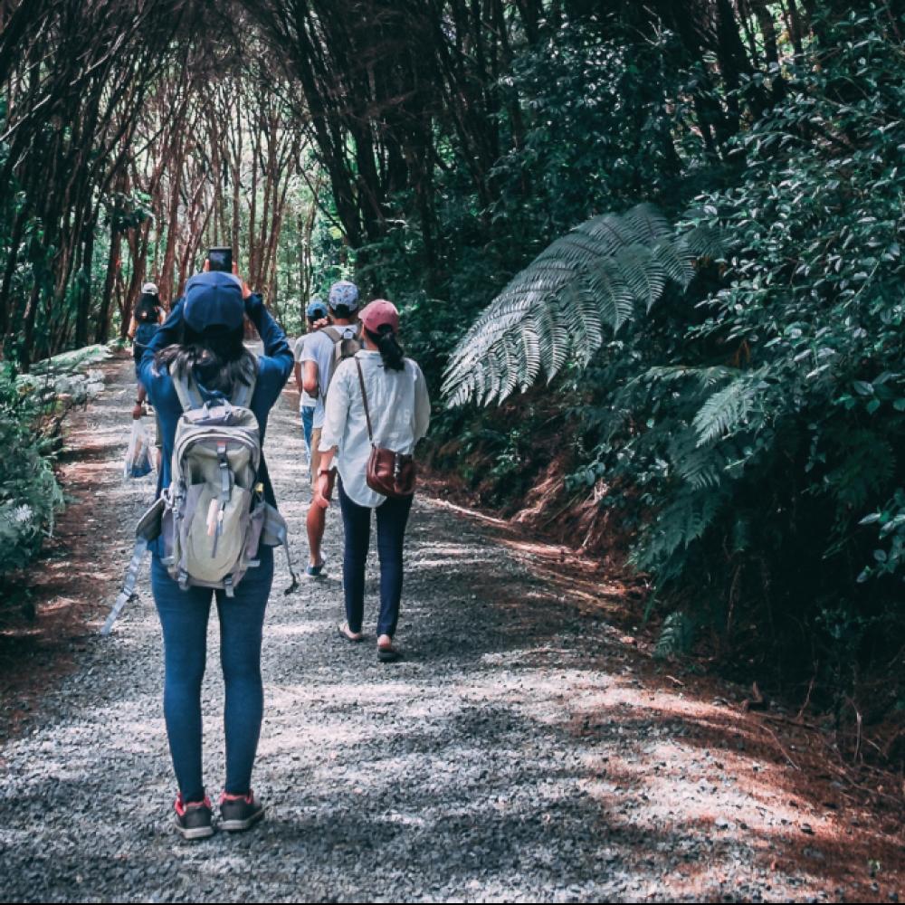 Experiencia_caminhada_fitlovers